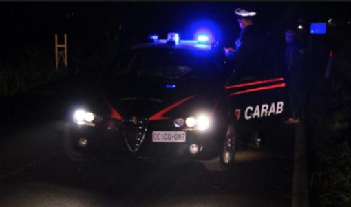 Pavese: controllo straordinario del territorio effettuato dai carabinieri