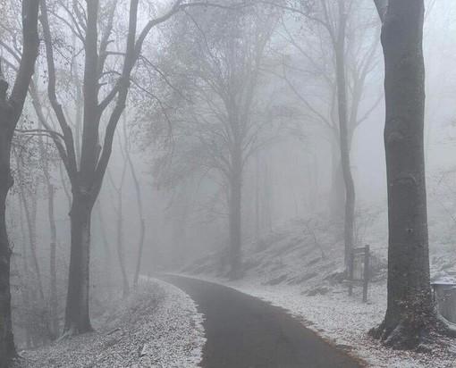 FOTO. Atmosfere magiche nel Varesotto. La prima neve della stagione imbianca il Campo dei Fiori