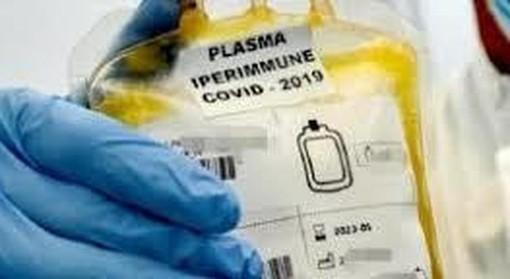 Nasce la Banca del Plasma lombardo per curare il Coronavirus con gli anticorpi di chi lo ha sconfitto