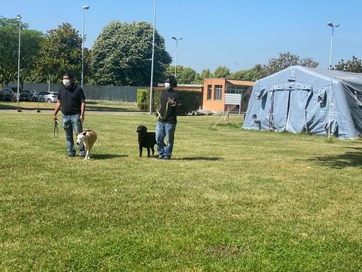 """Progetto """"Qua la zampa"""", a Pavia i cani entrano in carcere per aiutare i detenuti nel percorso riabilitativo"""