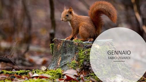 57 fotografi, 18 classi: è un successo il concorso fotografico indetto dal parco del Ticino