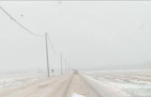 Arriva la neve in Lomellina, disagi sulla provinciale 28 tra Pieve del Cairo e Sannazzaro