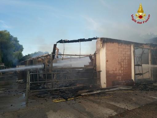 Pavese: incendio in un maneggio a Sant'Alessio con Vialone, trovati deceduti 11 cavalli