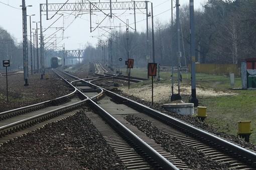 Codacons: 6 linee ferroviarie su 9 a Pavia in ritardo cronico. Pure la Milano-Mortara