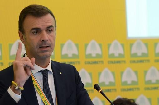 """Recovery Plan: Coldiretti, """"Conte accoglie sollecitazioni per svolta green"""""""