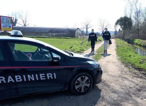 """Vigevano: """"market"""" della droga in azienda agricola, arrestato un 64enne"""