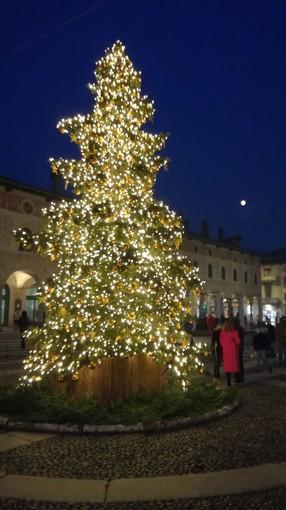 - FOTONOTIZIA - Vigevano: acceso l'Albero di Natale in piazza Ducale