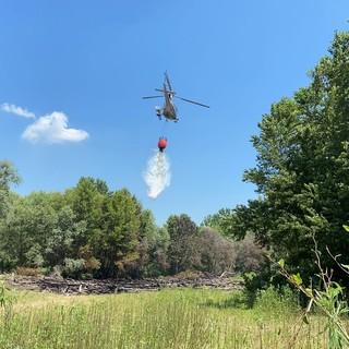 Mezzana Bigli: incendio brucia due ettari di fogliame e tronchi, salvato un gregge di pecore