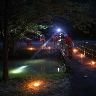 """Al parco ittico """"Paradiso"""" torna protagonista il bagliore delle lucciole, due appuntamenti per ammirare lo spettacolo serale"""