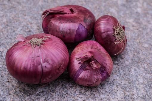 Viaggio nell'Italia dei Presìdi Slow Food: la cipolla rossa di Breme