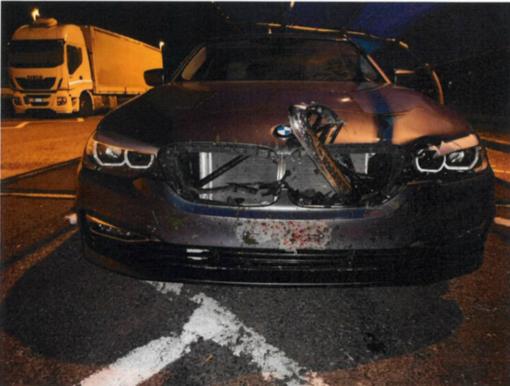 Automobilista pavese investe un cerbiatto in autostrada a Reggio Emilia, vivo per miracolo ma danni alla vettura per 7.500 euro
