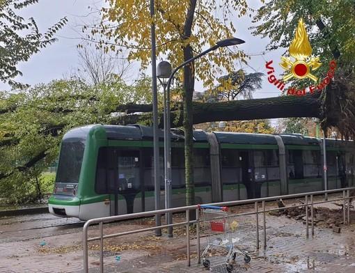 Maltempo anche a Milano: pianta crolla su un tram