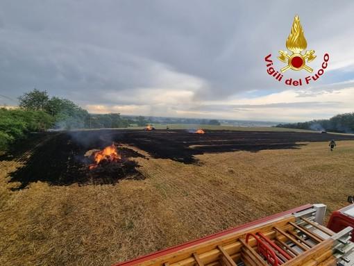 Broni: incendio di sterpaglie in un campo di frumento, intervengono i Vigili del fuoco