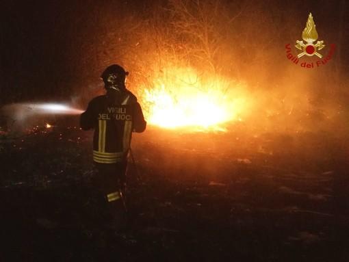 Mede: vasto incendio in un canneto domato dai Vigili del fuoco