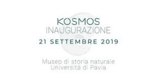 Domani verrà inaugurato Kosmos, il museo di storia naturale dell'università di Pavia