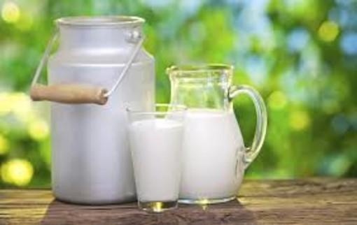 Coronavirus: Coldiretti denuncia speculazioni sul latte