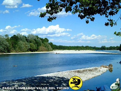 Un'opportunità per i giovani: il servizio civile nel Parco del Ticino