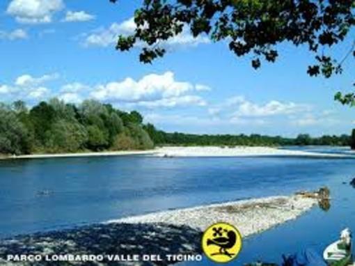 Parco del Ticino, un'opportunità per i giovani: indetto un bando per 8 posti nel servizio civile