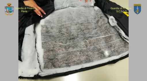 50 chili di coca dal Sudamerica, quindici arresti della Gdf tra Milano e Pavia