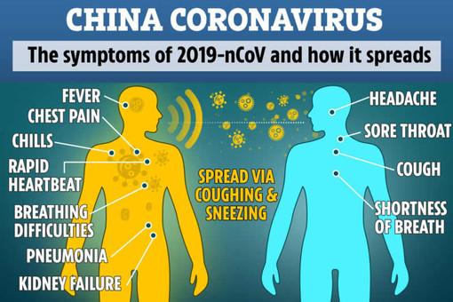 Coronavirus, salgono a 424 i contagiati: 258 in Lombardia